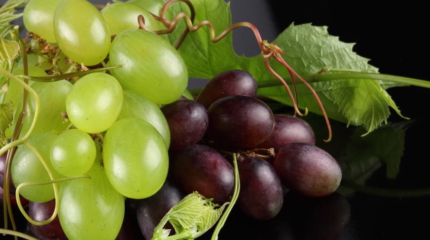 Черный и белый виноград