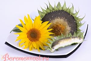 Можно ли беременным семечки ⇒ жареные, тыквенные, польза