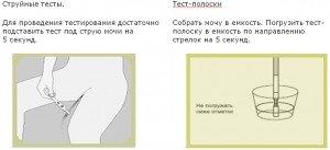 Инструкция к тест-полоске